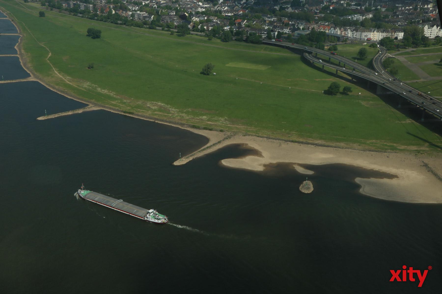 Entlang des Rheins wird am 14. September 2019 so richtig aufgeräumt (Foto: xity)