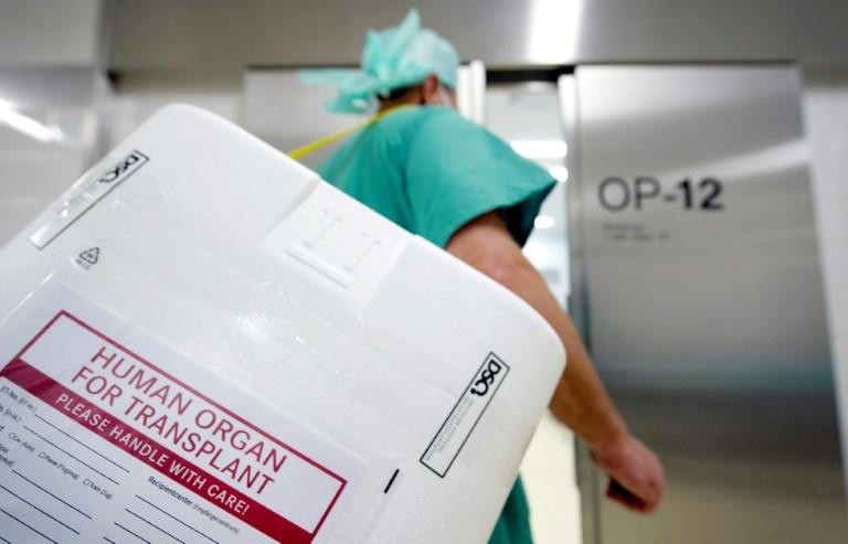 Abgeordnete stellen Organspende-Gesetzentwurf vor