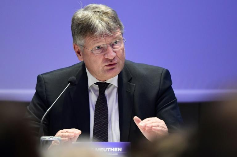 """Meuthen würde es in einem von Grünen geführten Deutschland """"nicht aushalten"""" (© 2019 AFP)"""