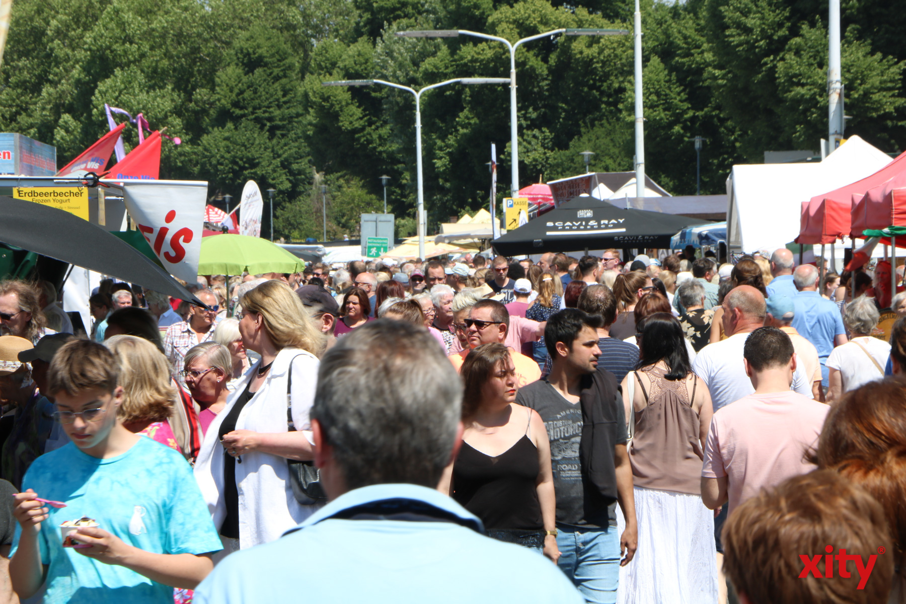 Tausenden Besucher kamen zum Fischmarkt an den Rhein (Foto: xity)