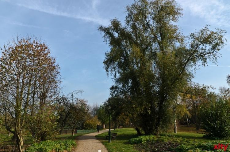 Fahrradexkursion mit floristischen Haltepunkten nach Kaiserswerth(Foto: xity)