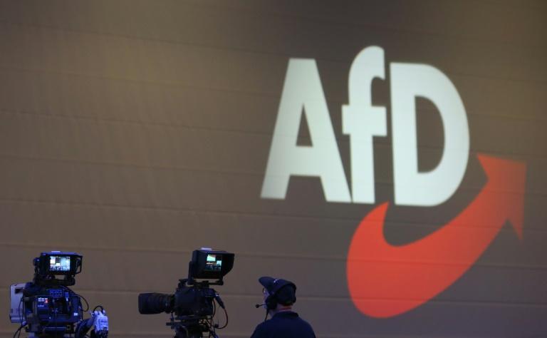 Für September geplanter Rentenparteitag der AfD soll auf 2020 verschoben werden (© 2019 AFP)