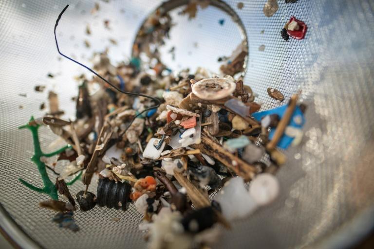 Studie: Menschen nehmen wöchentlich bis zu fünf Gramm Mikroplastik auf