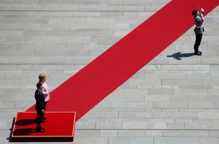 Merkel zittert beim Selenskyj-Empfang