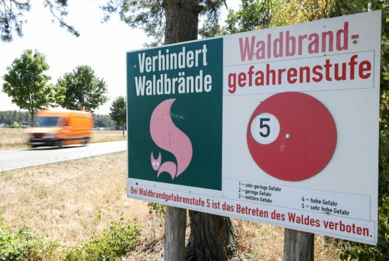 FDP-Politiker fordert wegen Brandgefahr generelles Waldverbot