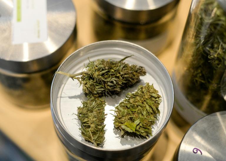 Cannabis-Plantage mit 1500 Pflanzen bei Feuerwehreinsatz in Lagerhalle entdeckt