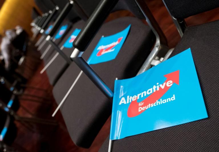 AfD-Parteigericht sieht rechtsnationalen Flügel in Konkurrenz zur Partei (© 2019 AFP)