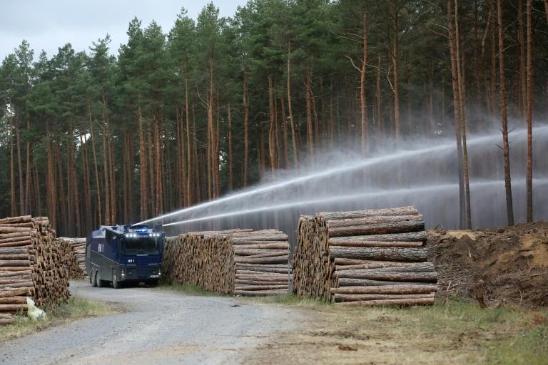 Mecklenburg-Vorpommerns Innenminister fordert nationale Waldbrand-Task-Force (© 2019 AFP)