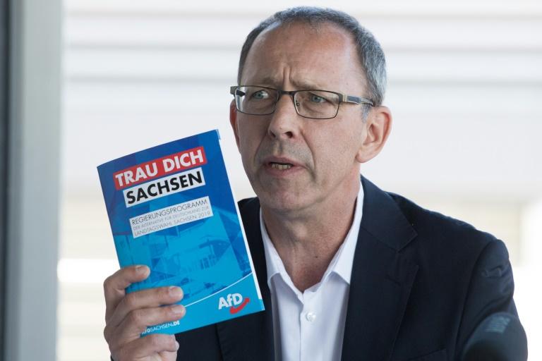 AfD in Sachsen legt Verfassungsbeschwerde gegen Kürzung der Landesliste ein (© 2019 AFP)