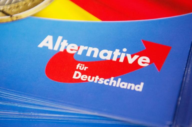 "AfD-Vize betont Bedeutung des Rechtsaußen-""Flügels"" in der Partei (© 2019 AFP)"