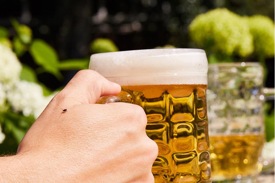 Zecken-Check in Deutschlands Biergärten