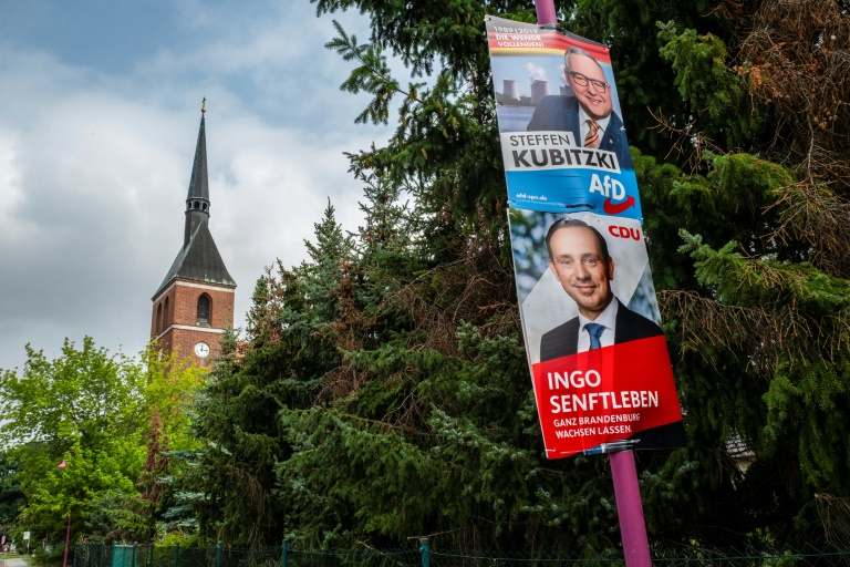 Sonntagstrend: AfD baut im Osten Vorsprung vor der CDU leicht aus (© 2019 AFP)
