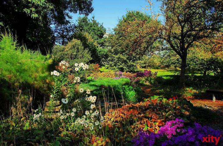 Gartenspaziergang in die Welt der Nutzpflanzen