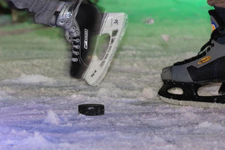 DEG fegt die Moskitos vom Eis