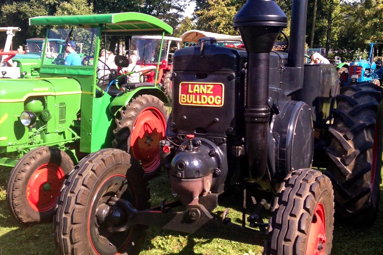 Mehrere hundert historische Traktoren wie diese kommen zum Treckertreff ins Niederrheinische Freilichtmuseum. (Foto: Niederrheinisches Freilichtmuseum)