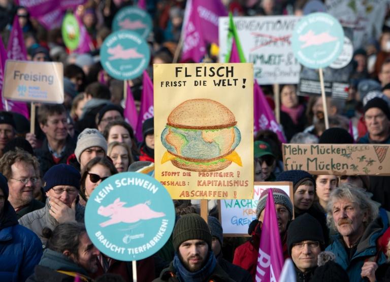 Großdemonstration in Berlin für Klimaschutz und Agrarwende (© 2020 AFP)