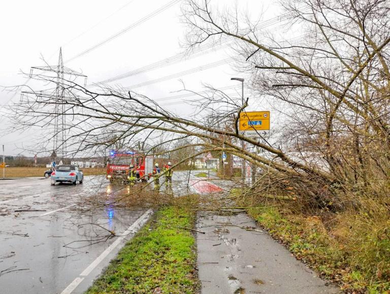 Drei Menschen sterben seit Dienstag bundesweit bei stürmischem Winterwetter