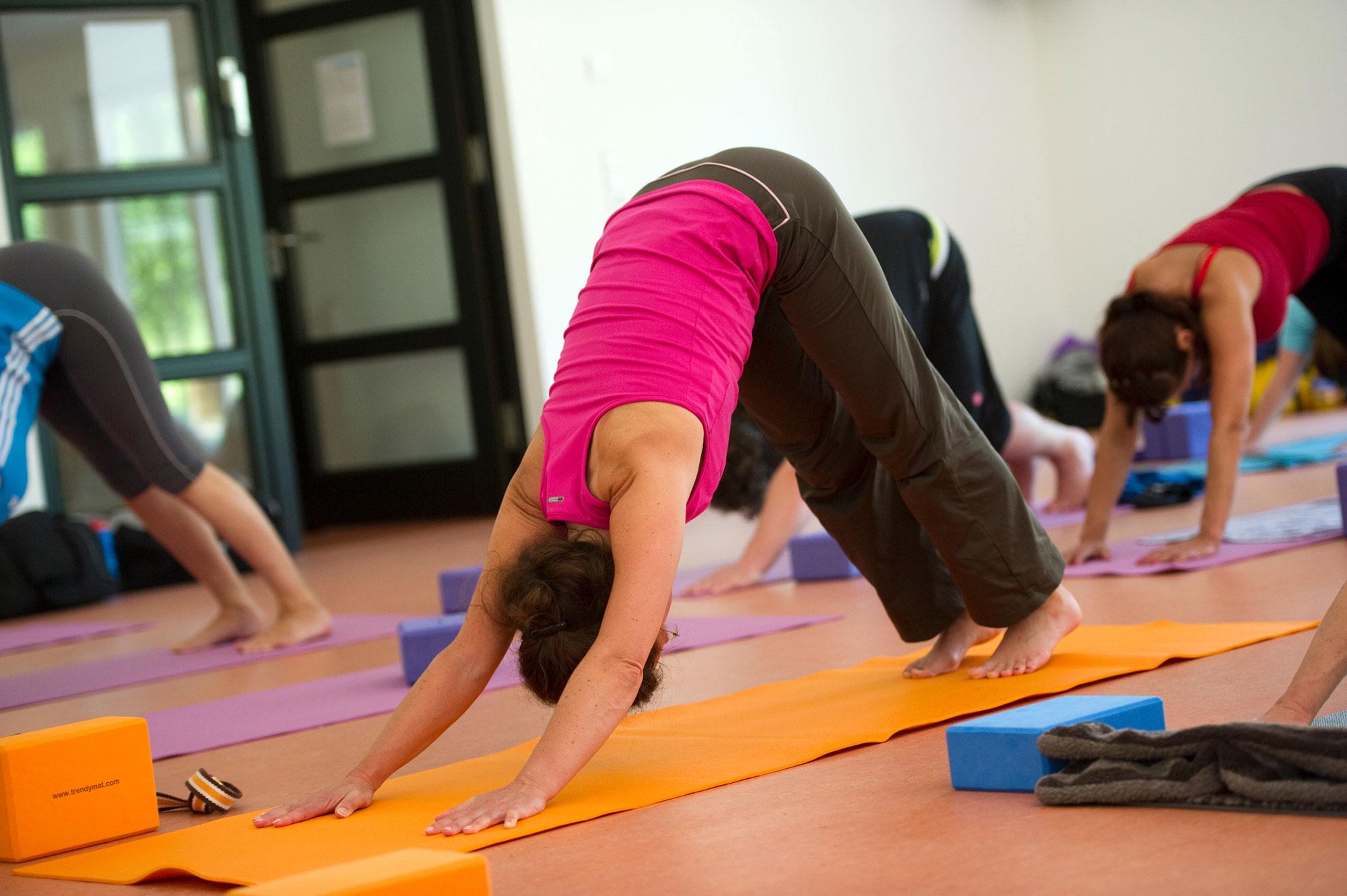 Der KreisSportBund Viersen bietet eine Ausbildung zum YogaFitness Trainer an. (Foto: Bowinkelmann)