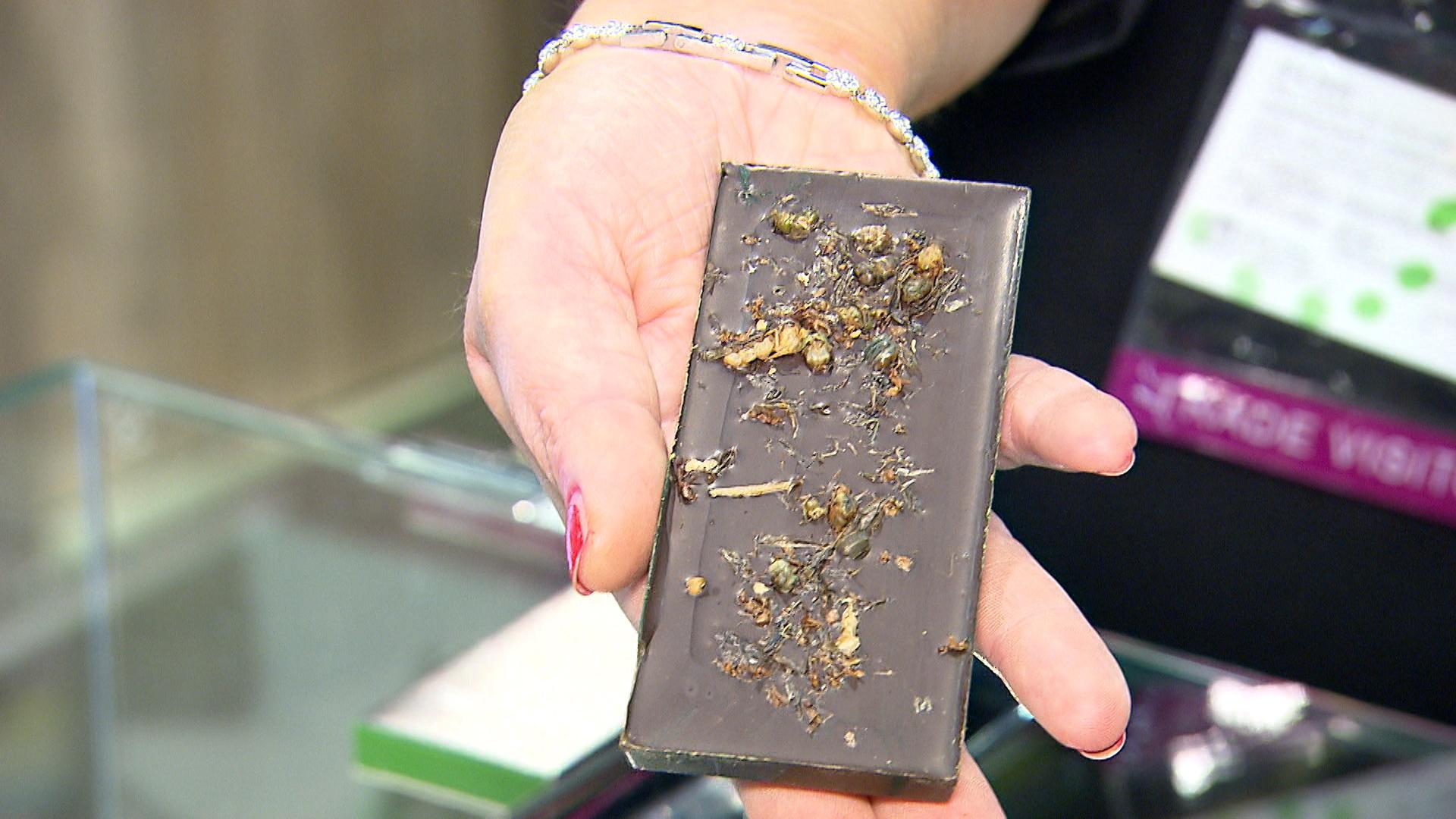 Eine Proteinquelle, die wohl gewöhnungsbedürftig ist: Grüne Ameisen in der Schokolade (Foto: hellofootage)