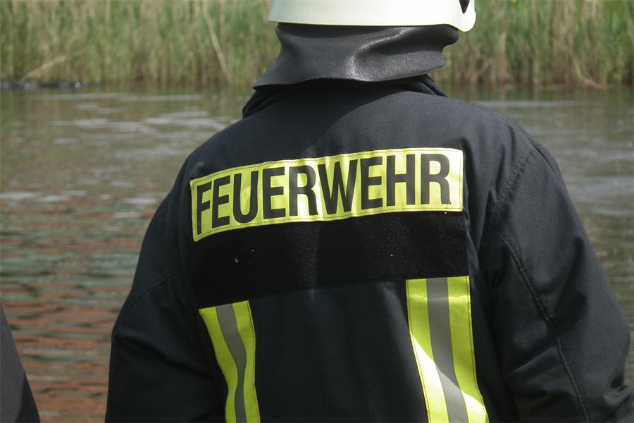Feuerwehr rettet Hund von einer aus Treibgut entstanden Insel aus dem Rhein (Foto: xity)