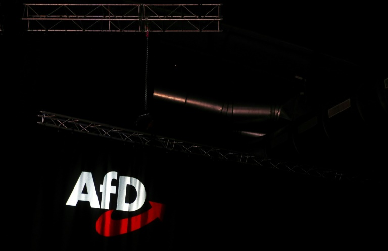 """Bericht: AfD-""""Flügel"""" nutzte offenbar schwarze Kasse (© 2020 AFP)"""