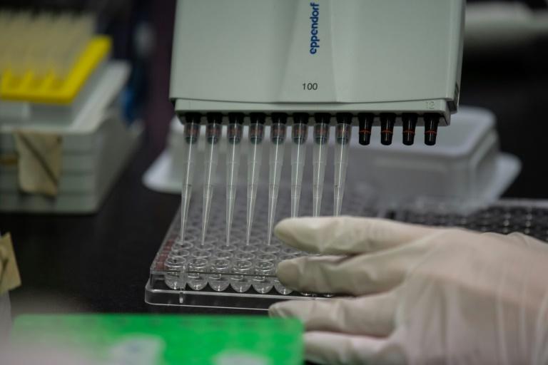 CureVac-Chef: Ab Herbst könnten Zehntausende Corona-Impfstoff erhalten (© 2020 AFP)
