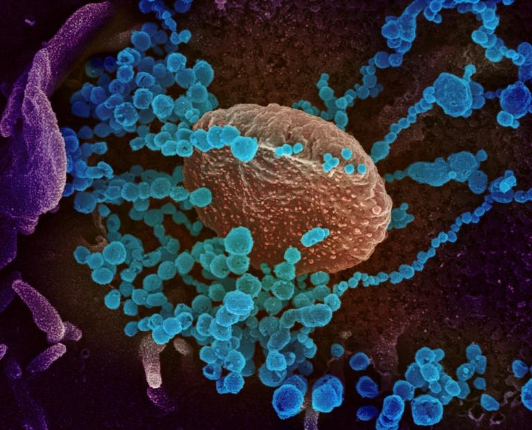Reproduktionszahl des Coronavirus in Deutschland erneut über eins