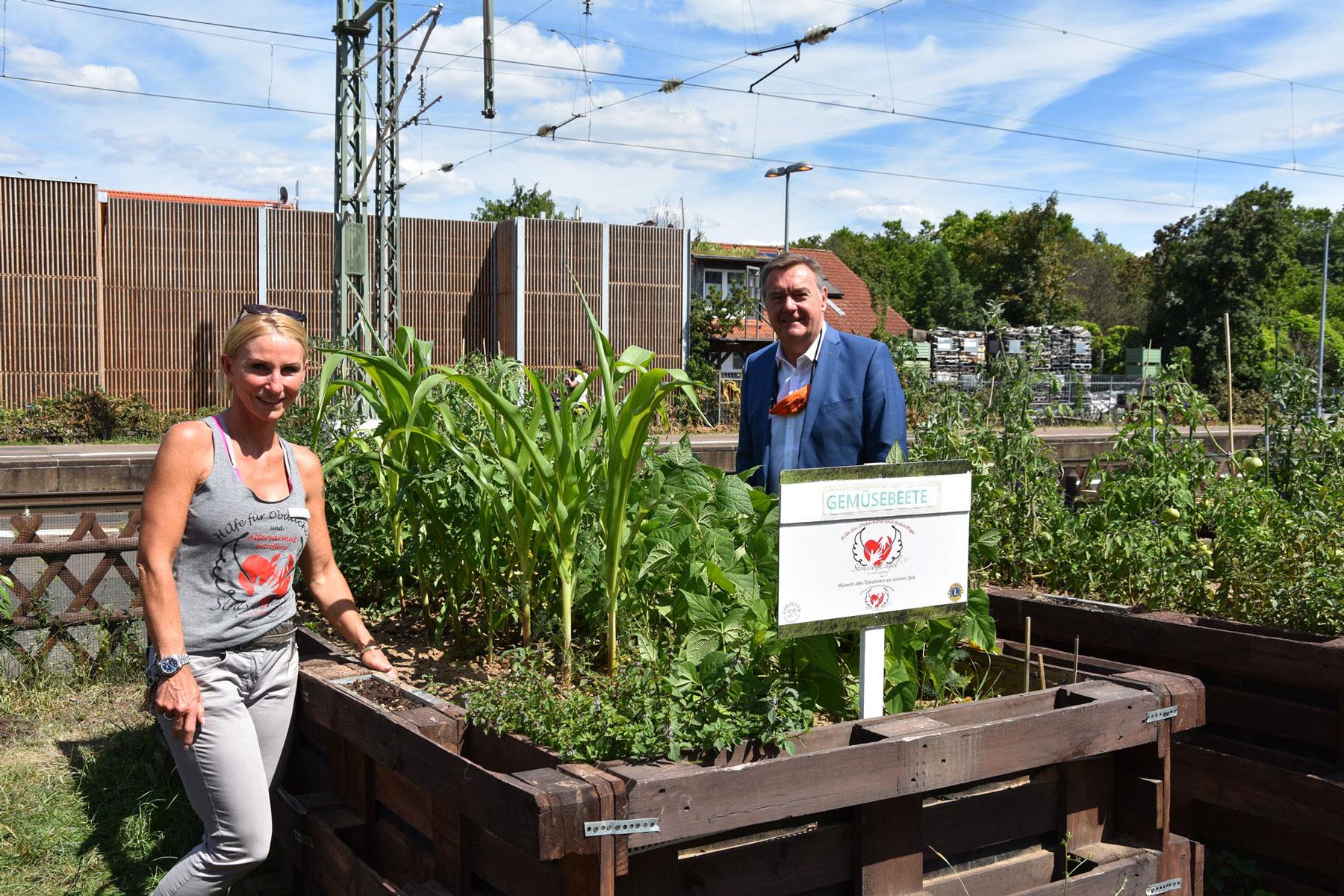 OB Kaminsky besucht Urban Gardening Projekt am Nordbahnhof (Foto: Stadt Hanau)