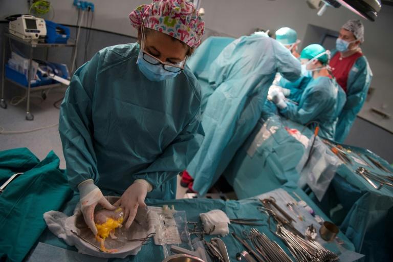 Bereitschaft zu Organspende in Deutschland zuletzt gestiegen (© 2020 AFP)