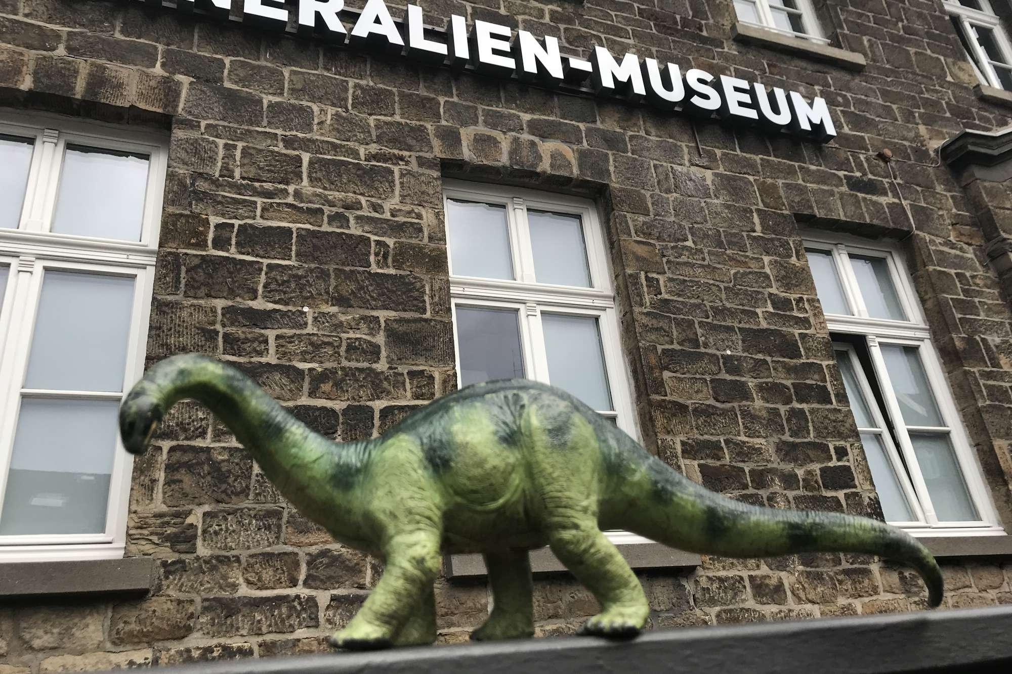"""Das Mineralien-Museum in Essen bietet eine Führung """"Auf den Spuren der Dinosaurier"""" für Familien mit Kindern an. (Foto: Ruhr Museum)"""