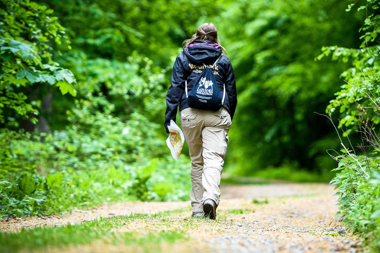 Die Naturparkführer des Naturparks Arnsberger Wald laden wieder zu einer geführten Wanderung ein. (Foto: Daniel Schröder)