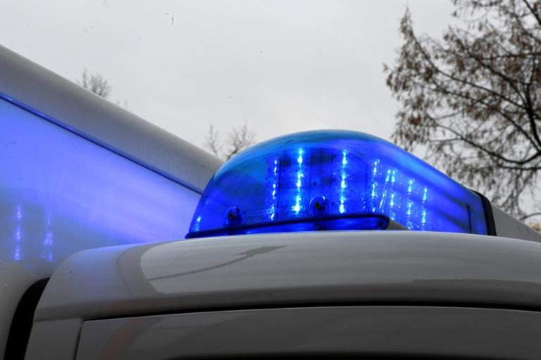 Tiefgefrorene Truthähne verteilen sich bei Unfall auf Autobahn nahe Heilbronn (© 2020 AFP)
