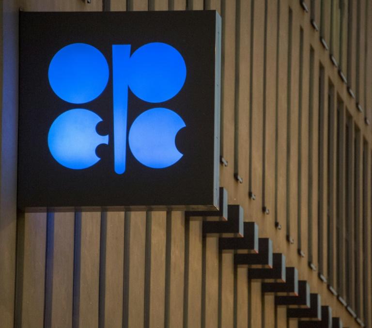 Ifo: Benzinpreis steigt wegen CO2-Steuer um sieben Cent - Diesel um acht Cent (© 2021 AFP)