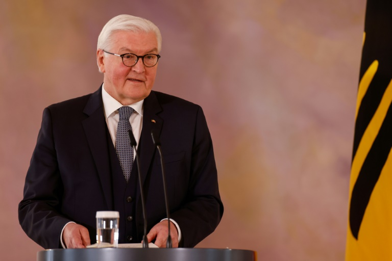 Bundespräsident Steinmeier fordert Durchhaltevermögen bei der Pandemiebekämpfung (© 2021 AFP)