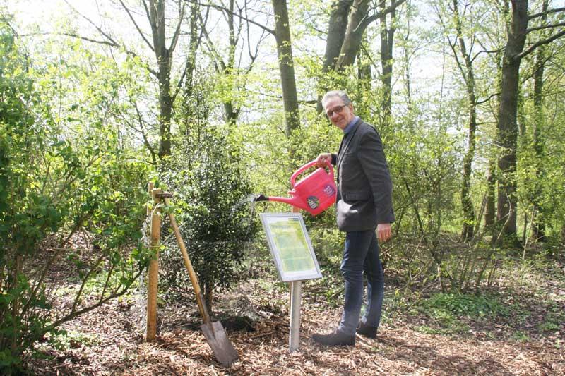 """Umweltdezernent Matthias Peck pflanzte eine stattliche Stechpalme am """"Weg der Jahresbäume"""". (Foto: Stadt Münster)"""