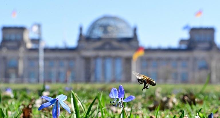 Bundestag beschließt Erleichterungen für Corona-Geimpfte (© 2021 AFP)