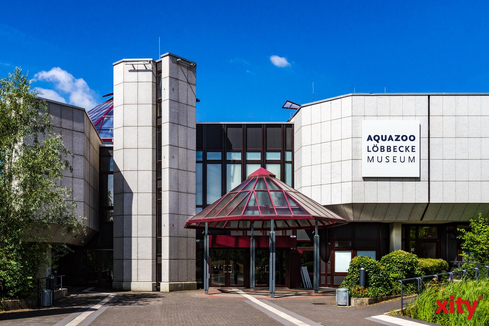 Besucherinnen und Besucher können nach vorheriger Terminvereinbarung wieder Kulturinstitute erkunden(Foto: xity)