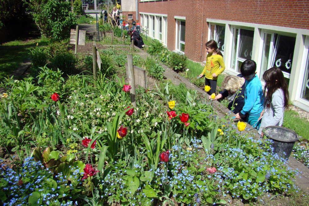 Auch die Schülerinnen und Schüler der Eichendorffschule sind regelmäßig schwer aktiv in ihrem Schulgarten. (Foto: Eichendorffschule)