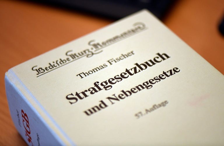 Prozess gegen Besetzerin aus Dannenröder Forst in Hessen gestartet (© 2021 AFP)