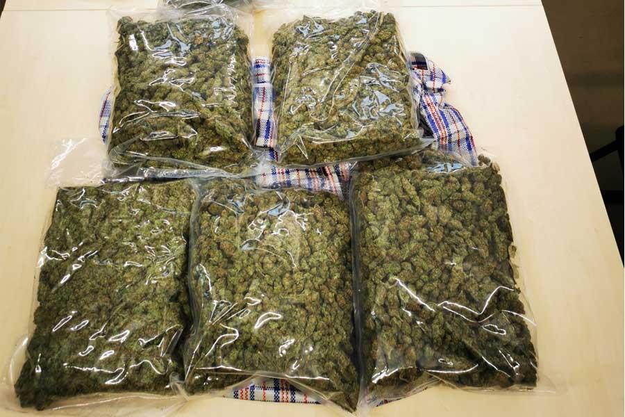 Beschlagnahme von etwa 15 Kilogramm Cannabiskraut (Foto: Polizei Düsseldorf)