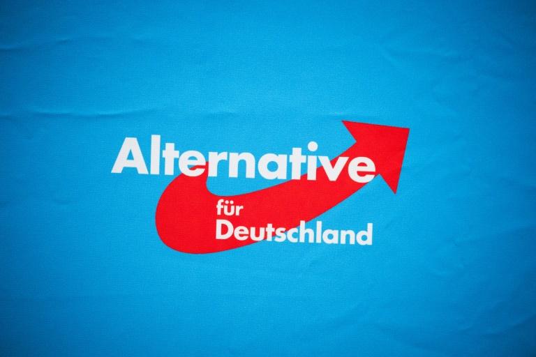 AfD-Fraktionschefin Weidel will mit Parteichef Chrupalla Spitzenduo bilden (© 2021 AFP)