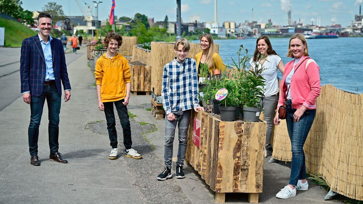 Hölzerne Blumenkästen für das untere Werftgelände in Krefeld (Foto: Stadt Krefeld, Presse und Kommunikation, A. Bischof)
