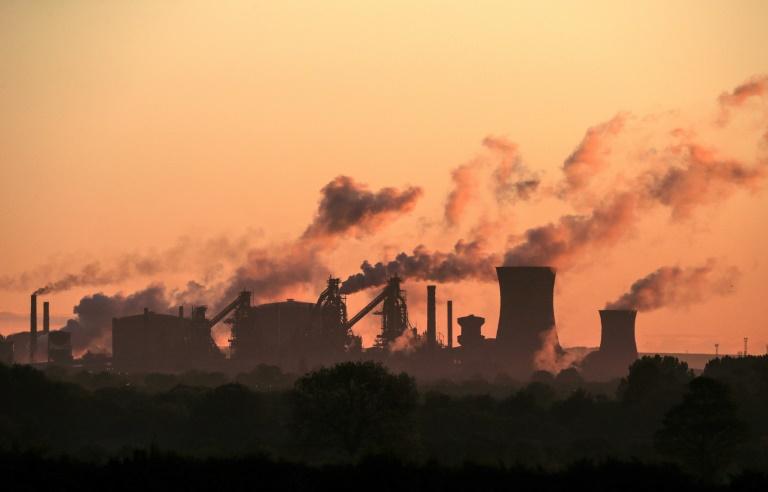 Grüne treten für höheren CO2-Preis und soziale Erleichterungen ein (© 2021 AFP)