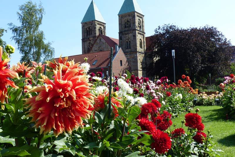 Dahliengarten Legden. (Foto: Kreis Borken)