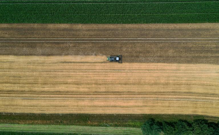 Übergabe des Abschlussberichts der Zukunftskommission Landwirtschaft an Merkel (© 2021 AFP)