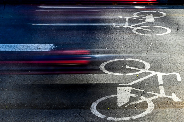 Grüne planen 1000 Euro Zuschuss für Lastenfahrräder (© 2021 AFP)