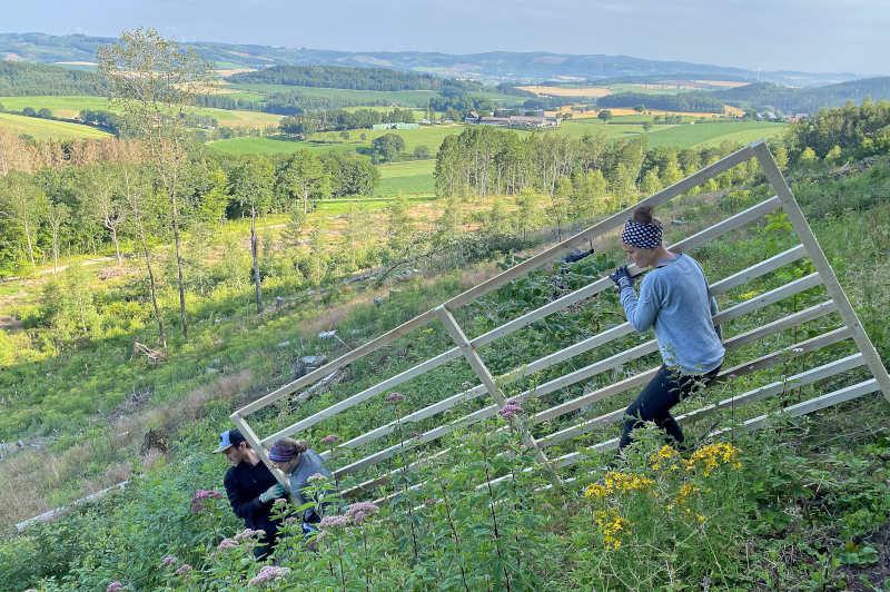"""Während der Wanderung wird auch die Arbeitsstelle vom """"Bergwaldprojekt"""" besichtigt. (Foto: Märkischer Kreis)"""