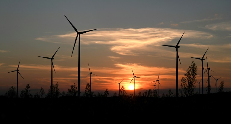 Umwelthilfe kündigt weitere Klimaklagen gegen Bundesländer an (© 2021 AFP)