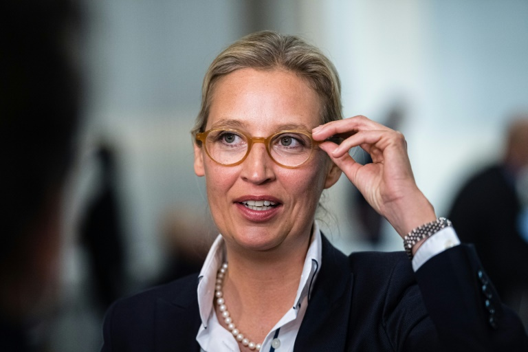 Alice Weidel kündigt Klagen der AfD gegen 2G-Regel an (© 2021 AFP)