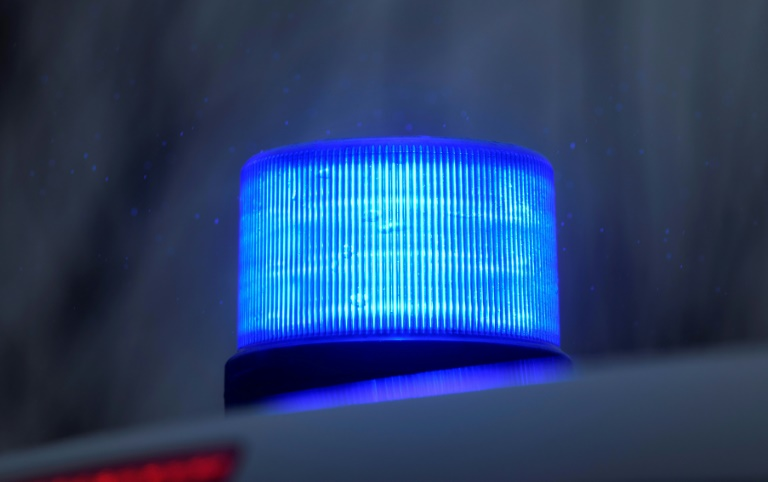 Lautstark randalierender Igel ruft in Neumünster drei Streifenwagen auf den Plan (© 2021 AFP)